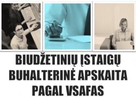 Nuotoliniai biudžetinių įstaigų buhalterinės apskaitos pagal VSAFAS kursai