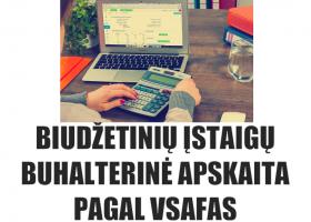 N11 – Biudžetinių įstaigų buhalterinė apskaita pagal VSAFAS (nuotoliniu būdu)
