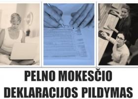 Pelno mokesčio deklaracijos PLN204 pildymo nuotolinis kursas